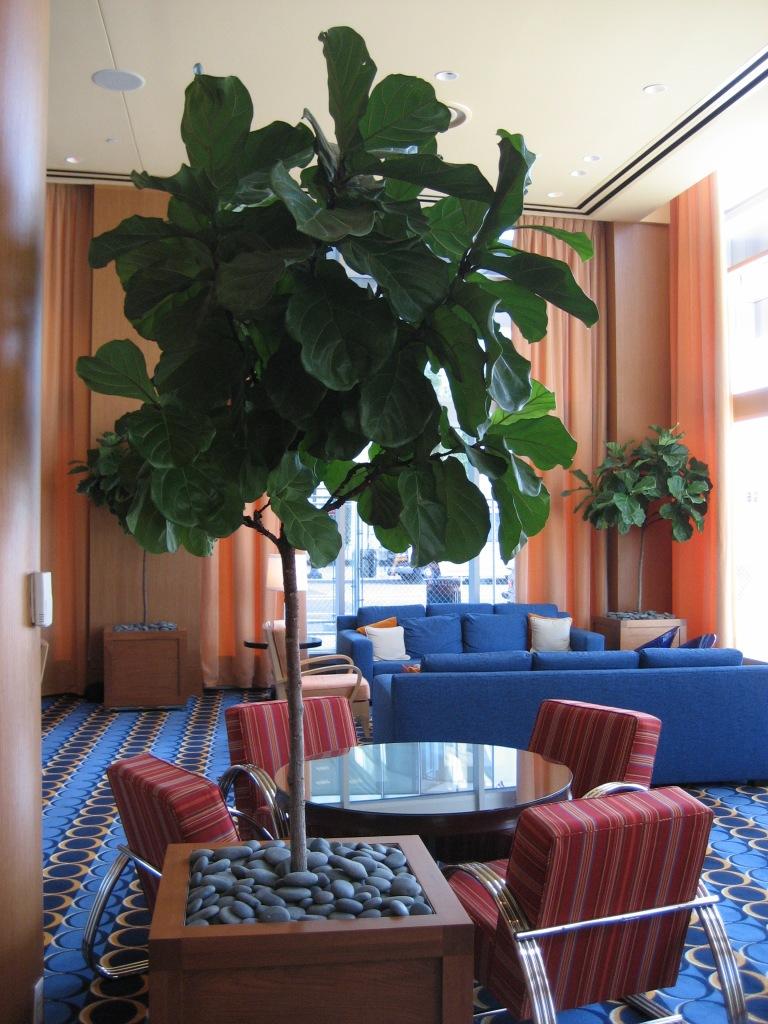 Renaissance Hotel-1
