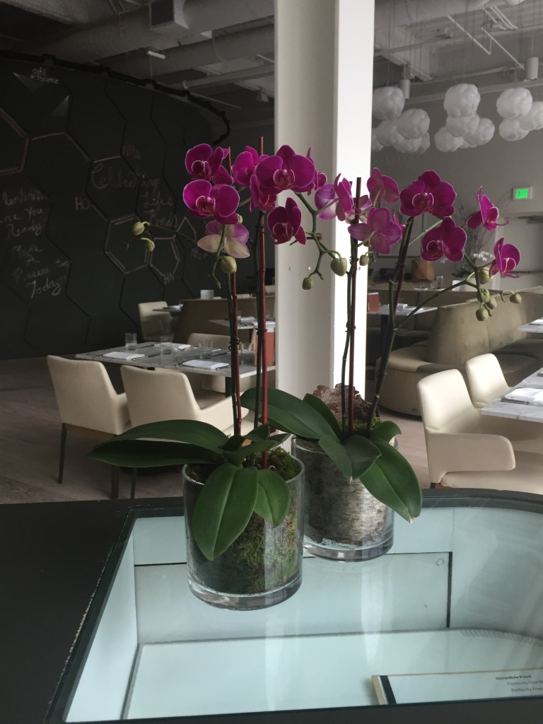 cafe-artscience-desk-orchids